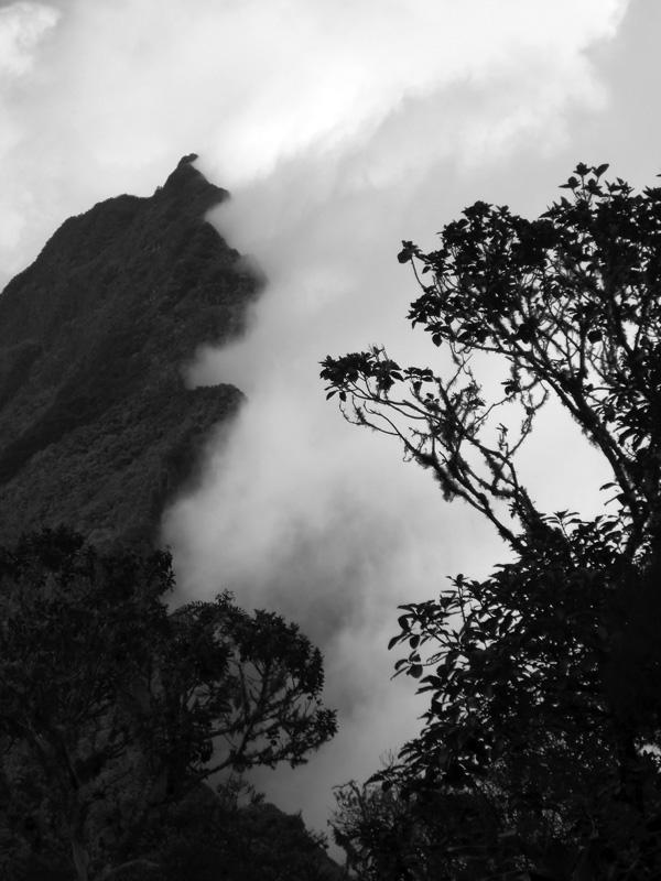 Des nuages avalent la montagne  (La Réunion)