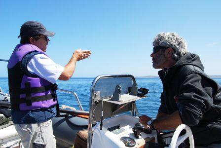 Biologistes Et Baleines 2